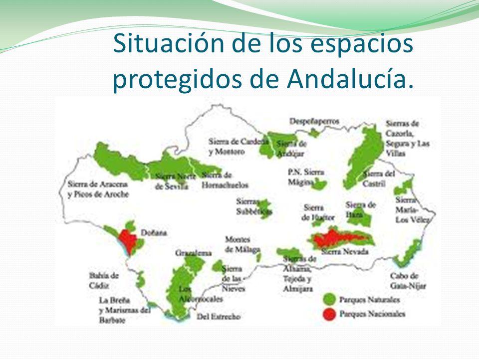 Situación de los espacios protegidos de Andalucía.