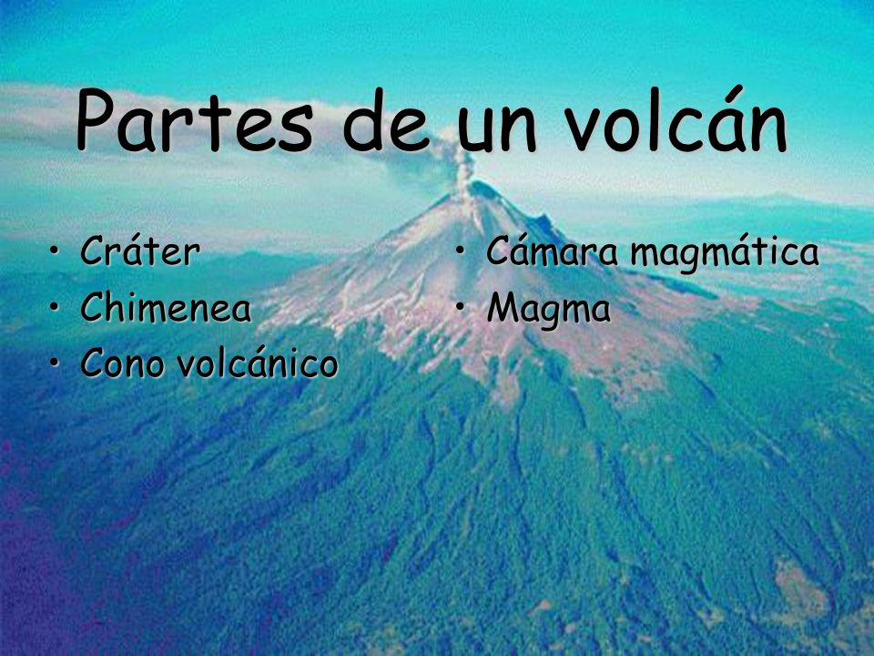 Partes de un volcán Cráter Chimenea Cono volcánico Cámara magmática