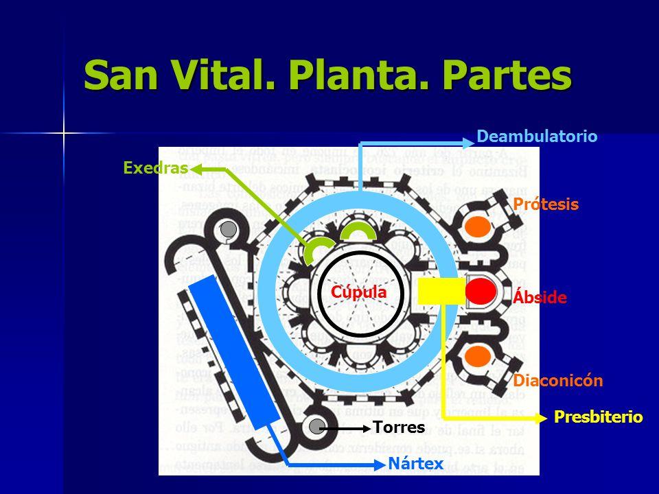 San Vital. Planta. Partes