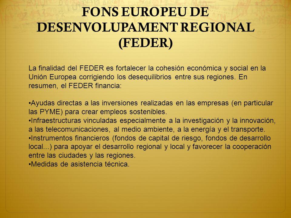 FONS EUROPEU DE DESENVOLUPAMENT REGIONAL (FEDER)