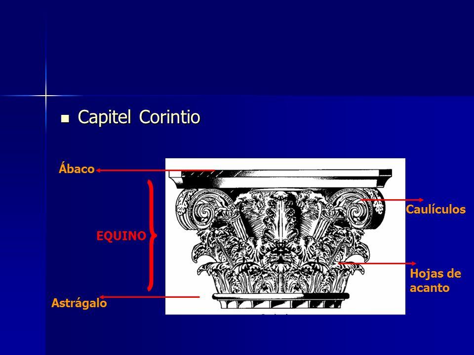Capitel Corintio Ábaco Caulículos EQUINO Hojas de acanto Astrágalo