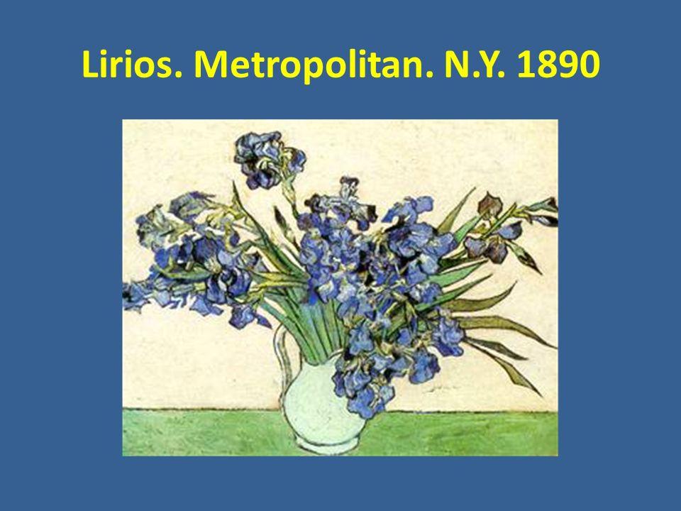 Lirios. Metropolitan. N.Y. 1890