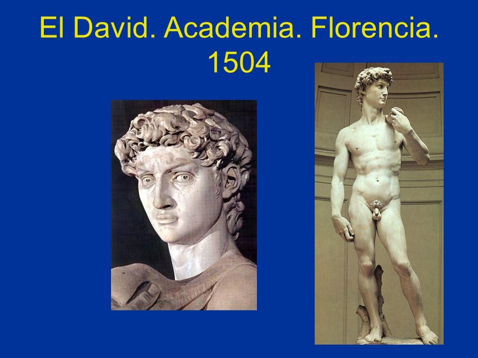 El David. Academia. Florencia. 1504
