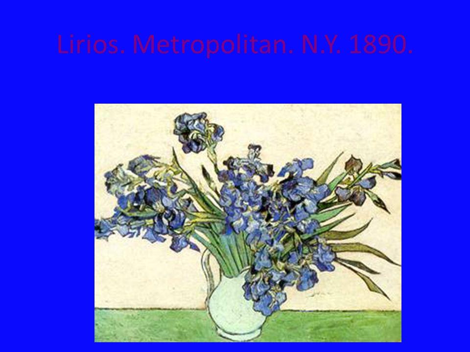 Lirios. Metropolitan. N.Y. 1890.