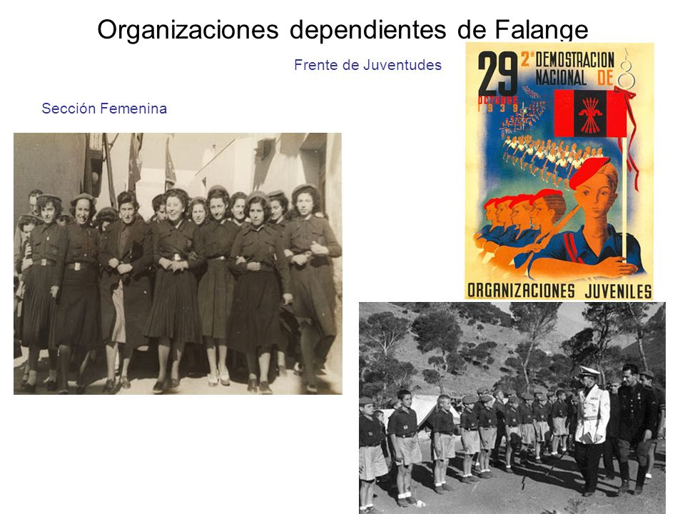 Organizaciones dependientes de Falange