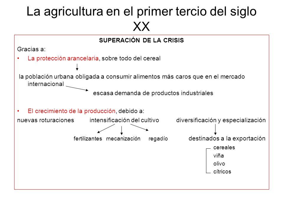 La agricultura en el primer tercio del siglo XX