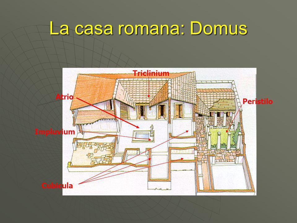 La casa romana: Domus Triclinium Atrio Peristilo Impluvium Cubicula