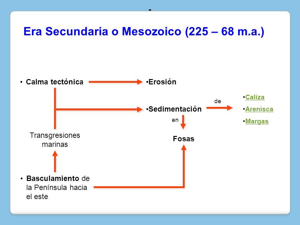 Era Secundaria o Mesozoico (225 – 68 m.a.)