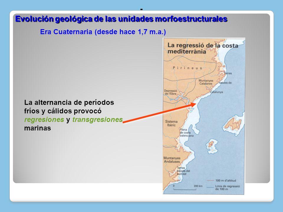 Era Cuaternaria (desde hace 1,7 m.a.)