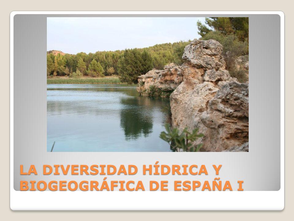 LA DIVERSIDAD HÍDRICA Y BIOGEOGRÁFICA DE ESPAÑA I
