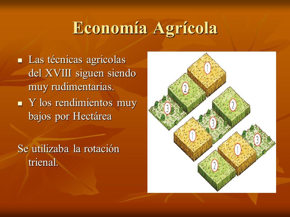 Economía Agrícola Las técnicas agricolas del XVIII siguen siendo muy rudimentarias. Y los rendimientos muy bajos por Hectárea.