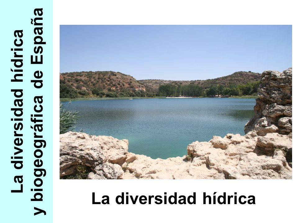 La diversidad hídrica y biogeográfica de España