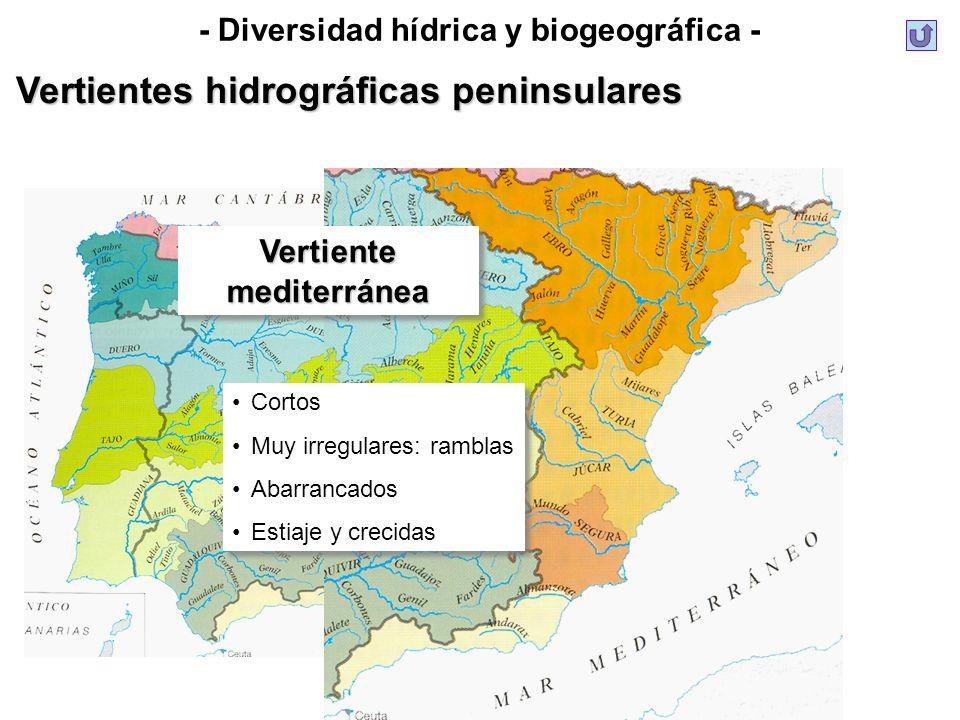 - Diversidad hídrica y biogeográfica -