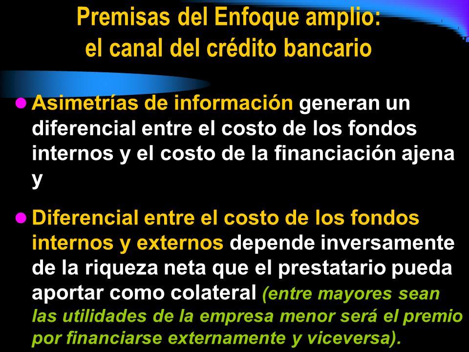 Premisas del Enfoque amplio: el canal del crédito bancario