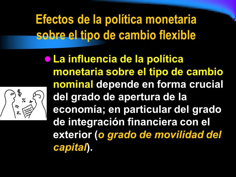 Efectos de la política monetaria sobre el tipo de cambio flexible
