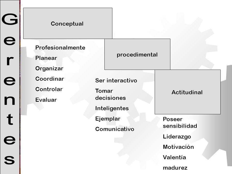 Gerentes Conceptual Profesionalmente procedimental Planear Organizar