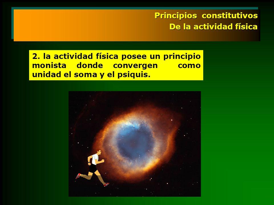 Principios constitutivos