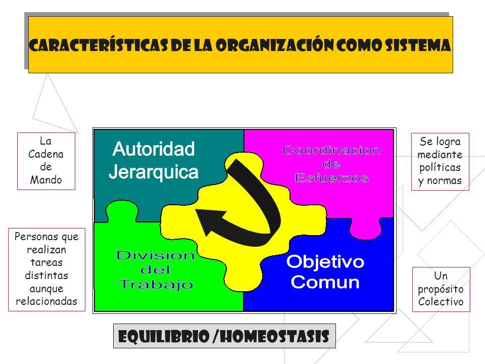 Autoridad Coordinacion Jerarquica de Esfuerzos Division Objetivo del