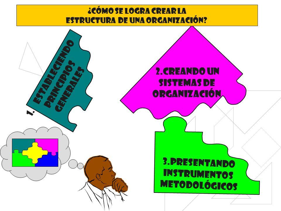 Estructura de una organización