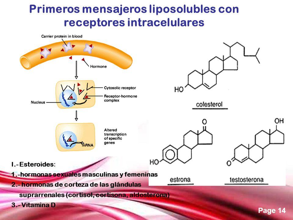 Primeros mensajeros liposolubles con receptores intracelulares