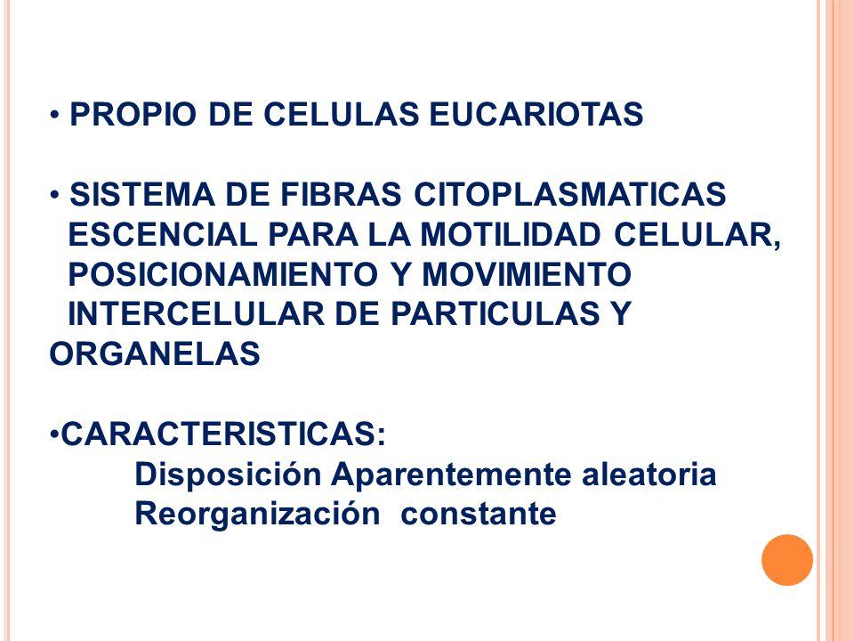PROPIO DE CELULAS EUCARIOTAS