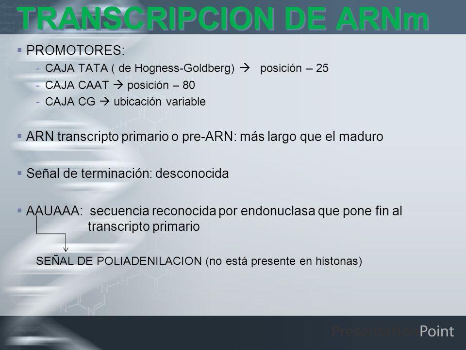 TRANSCRIPCION DE ARNm PROMOTORES: