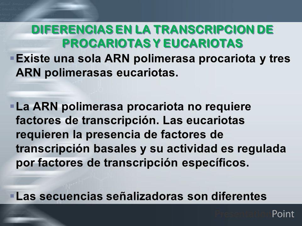 DIFERENCIAS EN LA TRANSCRIPCION DE PROCARIOTAS Y EUCARIOTAS