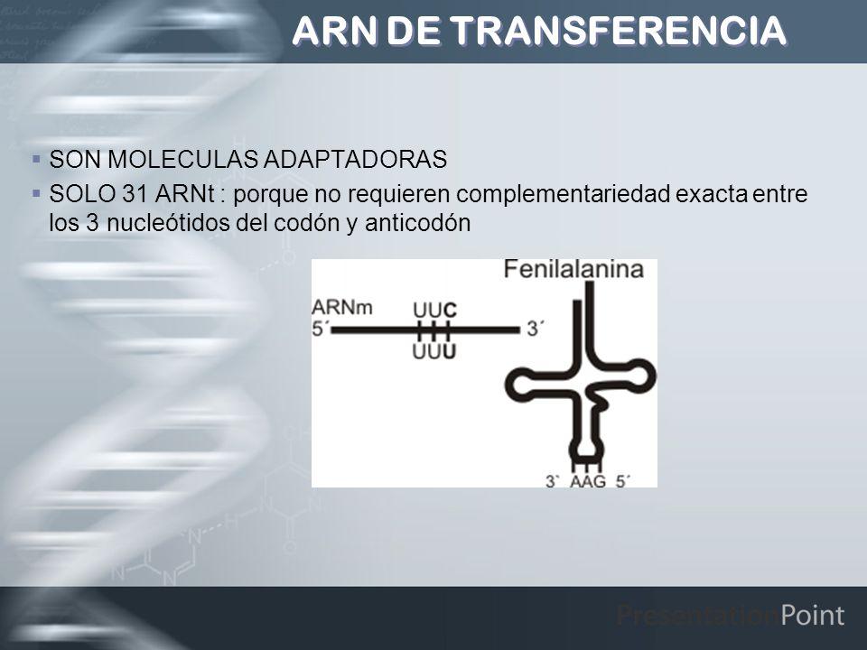 ARN DE TRANSFERENCIA SON MOLECULAS ADAPTADORAS