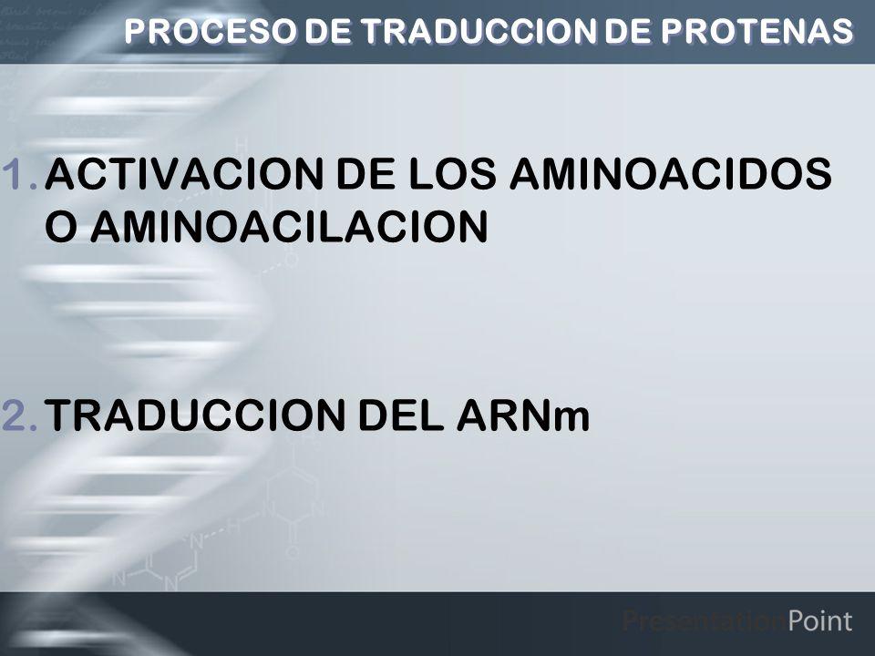 PROCESO DE TRADUCCION DE PROTENAS