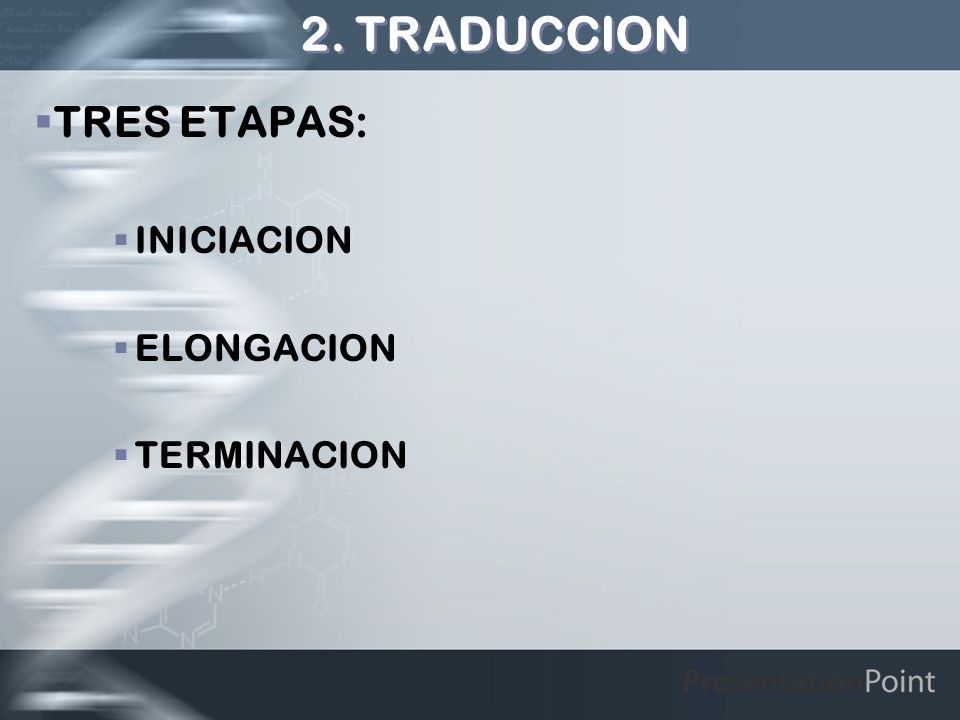 2. TRADUCCION TRES ETAPAS: INICIACION ELONGACION TERMINACION