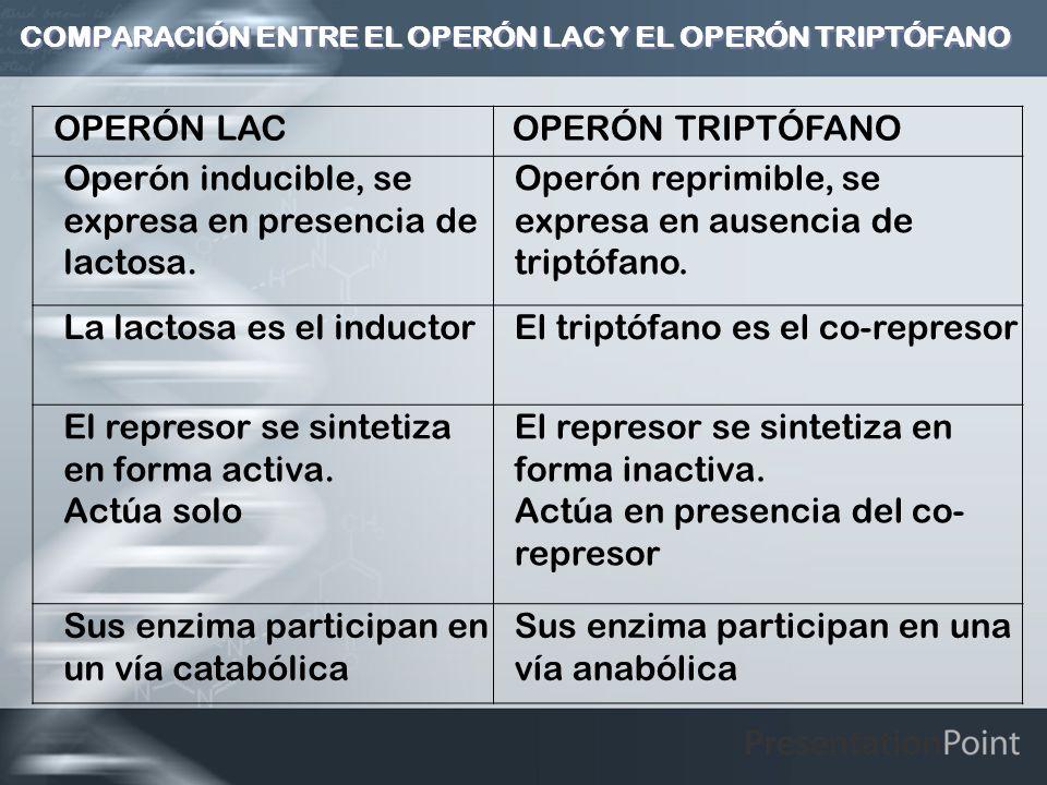COMPARACIÓN ENTRE EL OPERÓN LAC Y EL OPERÓN TRIPTÓFANO