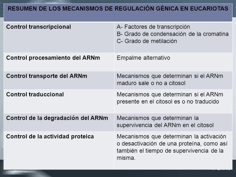 RESUMEN DE LOS MECANISMOS DE REGULACIÓN GÉNICA EN EUCARIOTAS