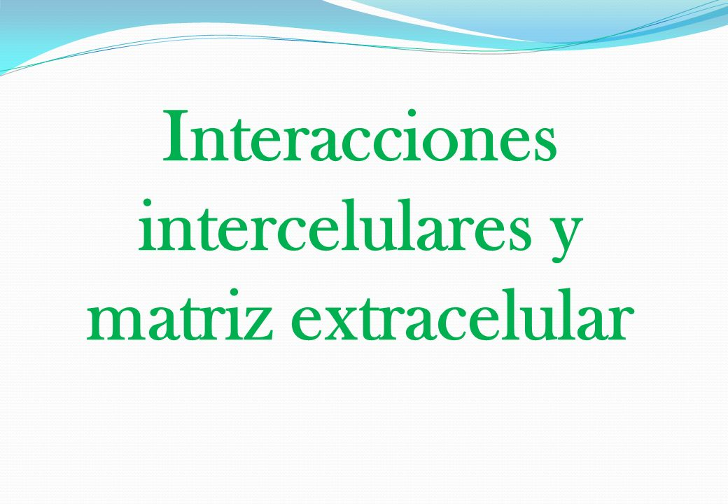 Interacciones intercelulares y matriz extracelular