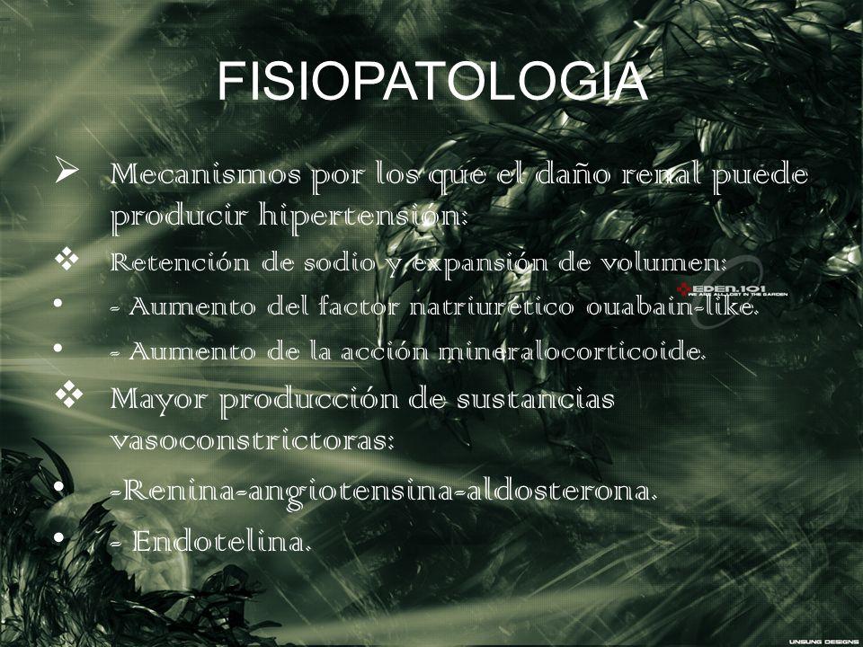 FISIOPATOLOGIA Mecanismos por los que el daño renal puede producir hipertensión: Retención de sodio y expansión de volumen: