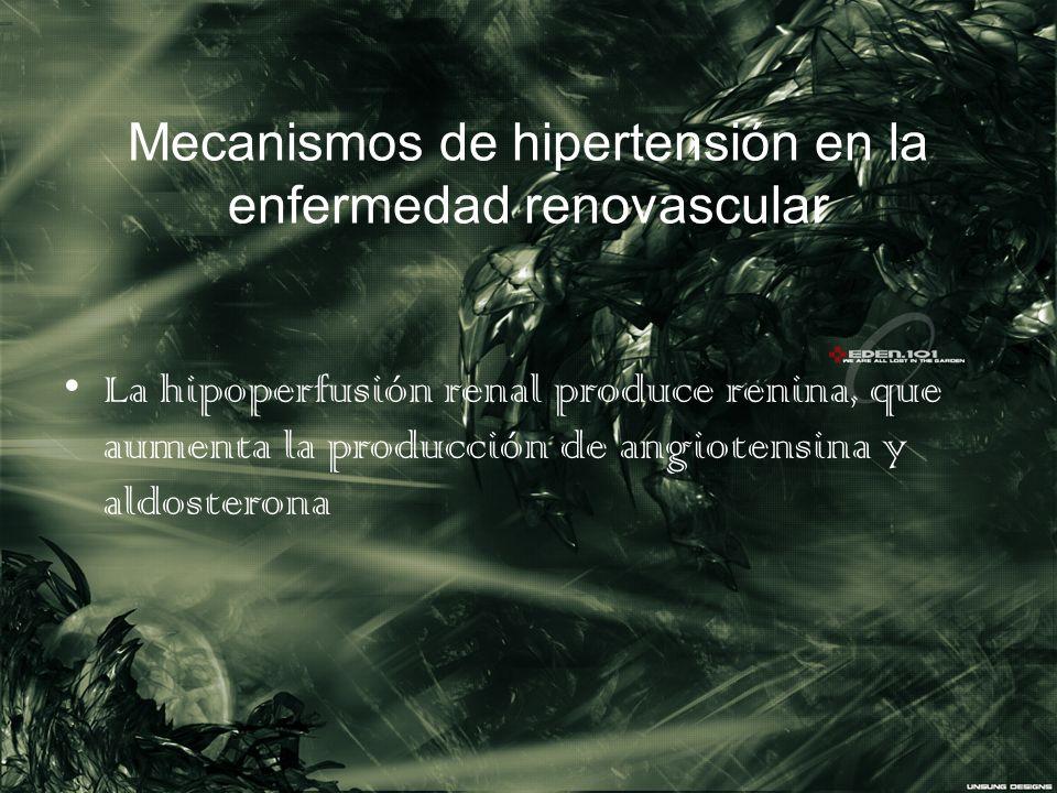Mecanismos de hipertensión en la enfermedad renovascular