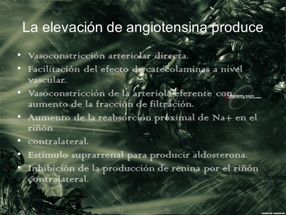 La elevación de angiotensina produce