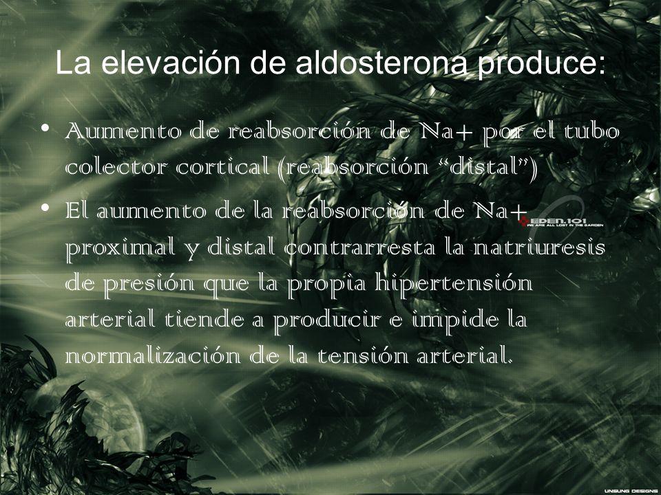 La elevación de aldosterona produce: