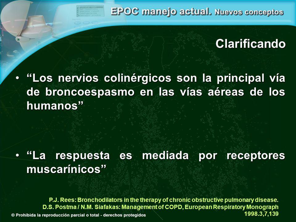Clarificando Los nervios colinérgicos son la principal vía de broncoespasmo en las vías aéreas de los humanos