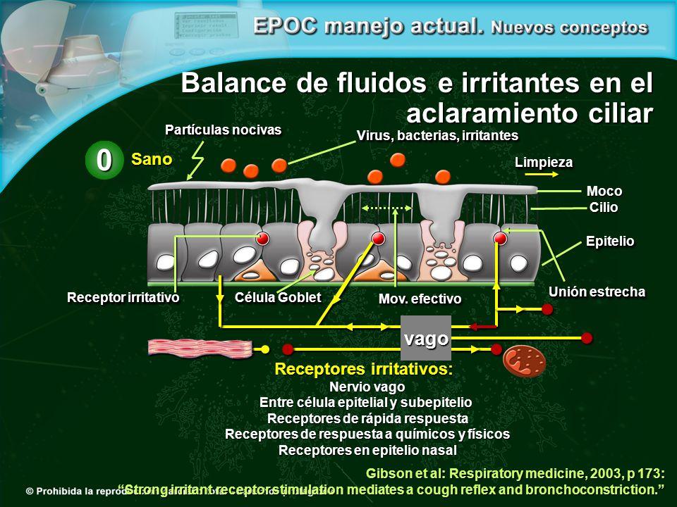 Balance de fluidos e irritantes en el aclaramiento ciliar