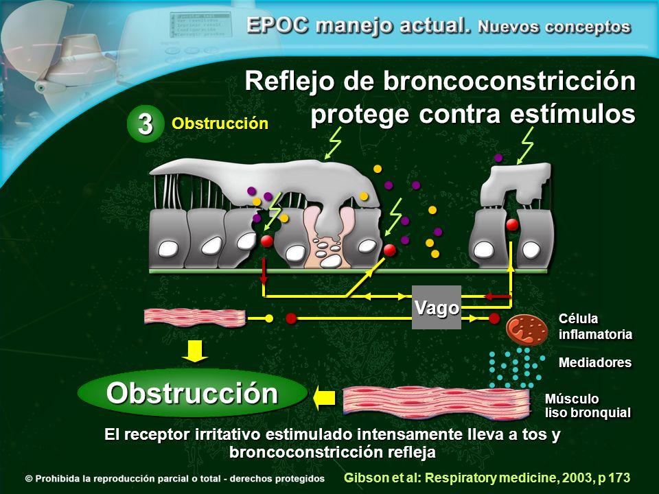 Reflejo de broncoconstricción protege contra estímulos