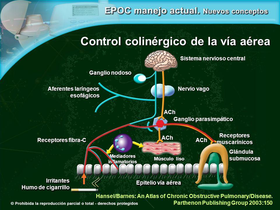 Control colinérgico de la vía aérea