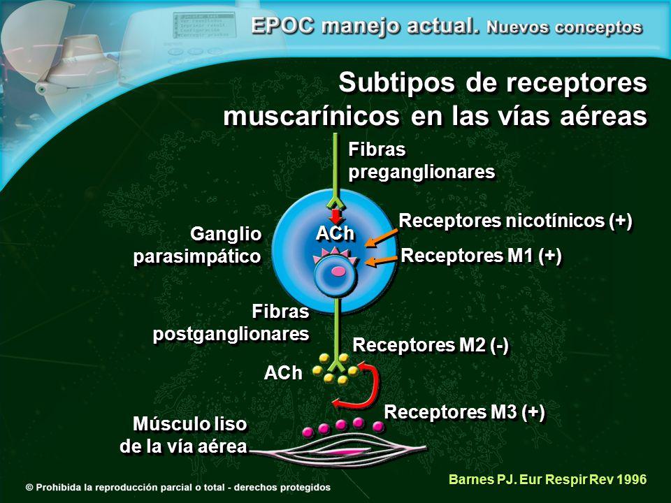 Subtipos de receptores muscarínicos en las vías aéreas