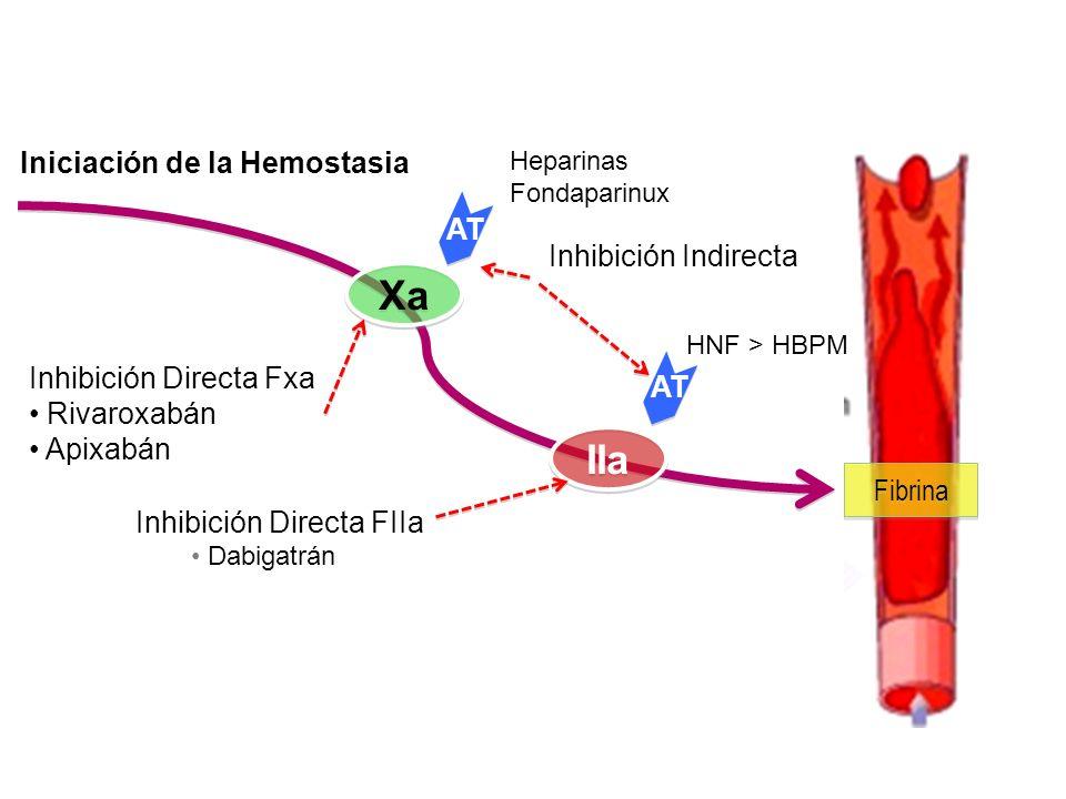 Xa IIa Iniciación de la Hemostasia AT Inhibición Indirecta