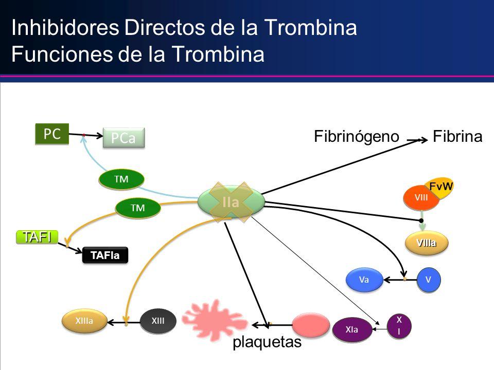 Inhibidores Directos de la Trombina Funciones de la Trombina