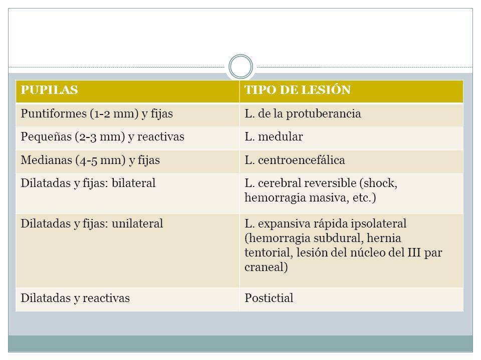 PUPILAS TIPO DE LESIÓN. Puntiformes (1-2 mm) y fijas. L. de la protuberancia. Pequeñas (2-3 mm) y reactivas.