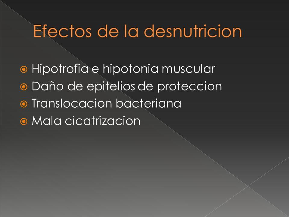 Efectos de la desnutricion