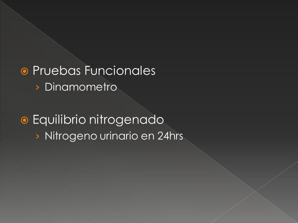 Equilibrio nitrogenado