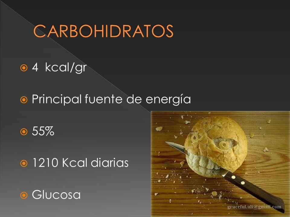 CARBOHIDRATOS 4 kcal/gr Principal fuente de energía 55%