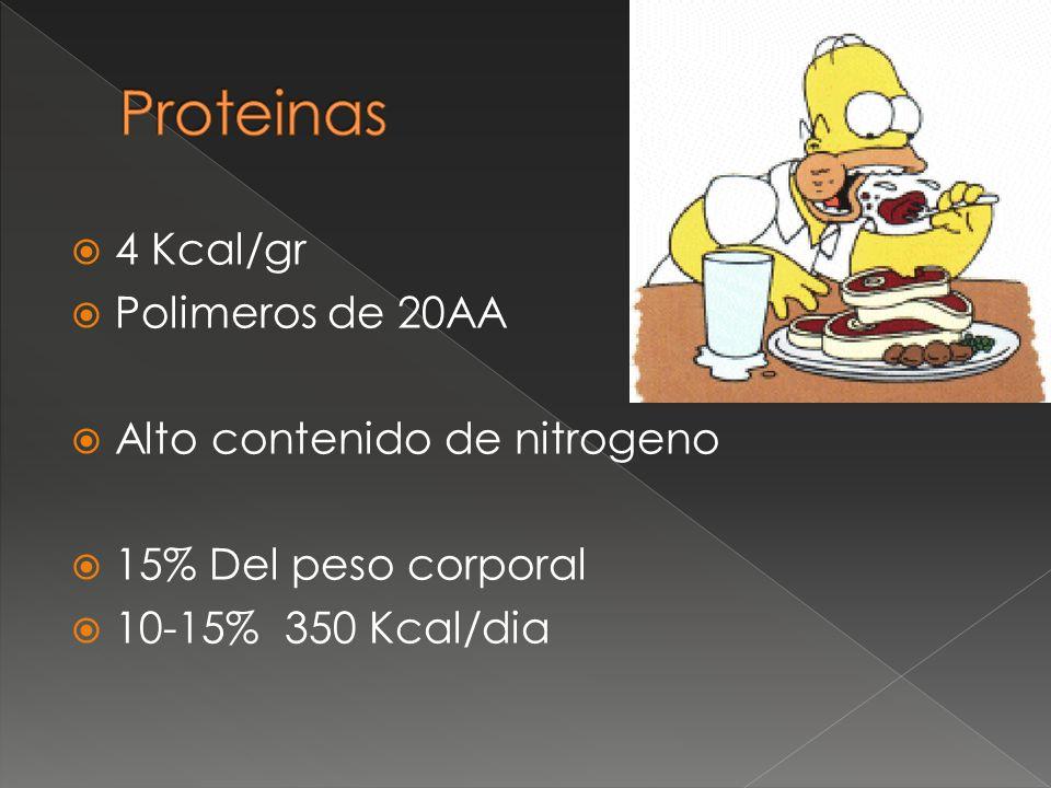 Proteinas 4 Kcal/gr Polimeros de 20AA Alto contenido de nitrogeno