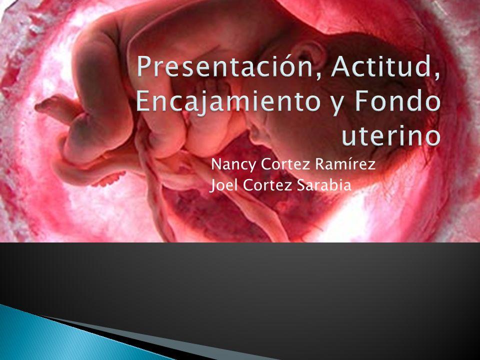 Presentación, Actitud, Encajamiento y Fondo uterino